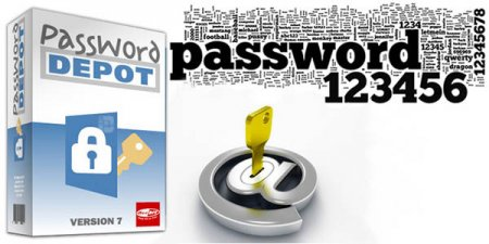 Password Depot Pro + crack