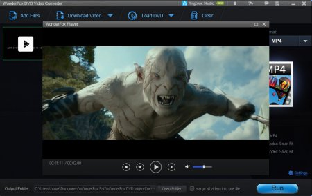 WonderFox DVD Video Converter portable