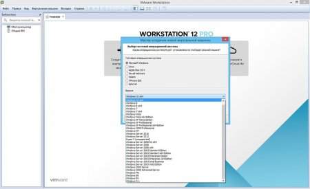 VMware Workstation 12 portable