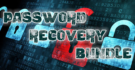 Password Recovery Bundle 2015 Enterprise Edition + Ключ